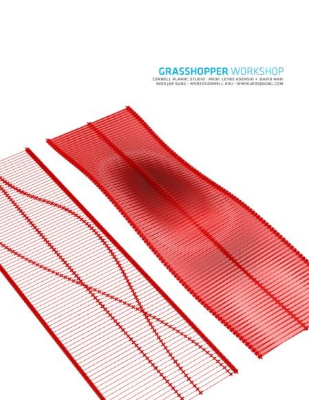 woojsungcom-rhinograsshopperworkshopcornell